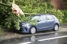Une assurance connectée qui limite les accidents !