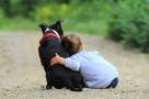 Les risques d'obésité et d'allergie en baisse... si on possède un chien !
