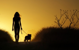 Promener son chien est bon pour la santé !