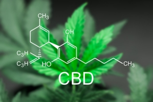 Huile CBD : les bienfaits constatés
