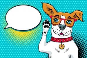 Un traducteur du langage animal, c'est pour bientôt !