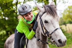 Assurance cheval