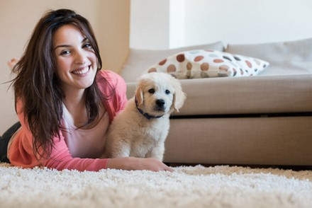Du poison pour chien ou chat dans votre maison ?